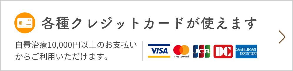 各種クレジットカードが使えます 自費治療10,000円以上のお支払いからご利用いただけます。